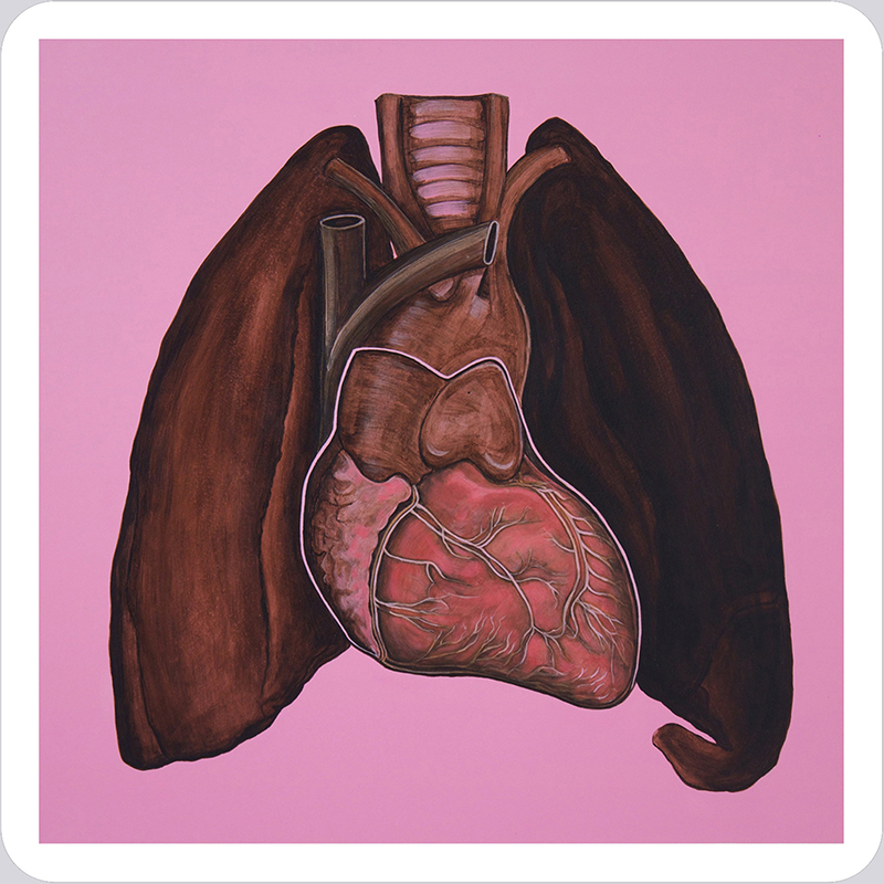 Bibiana Suárez, Pulmones / Lungs, from the Memoria (Memory) Series, 2005-2011.  Acrylic paint on aluminum panel, 23.5 x 23.5 in. Courtesy of the artist. ©Bibiana Suárez
